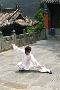 How Does Tai Chi Work?