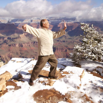Tai Chi Training FAQ: Can You Learn from Tai Chi Videos?
