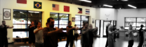 Can You Learn from Tai Chi Videos?
