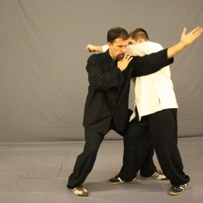 tai chi push hands