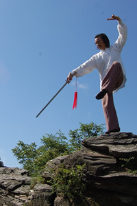 Tai Chi instructor training