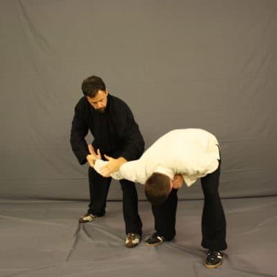 Tai Chi Martial Application