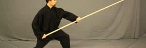 thirteen posture of tai chi