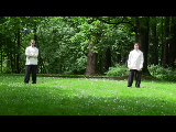 tai chi for physical therapy
